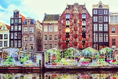 Bloemenmarkt. Amsterdam
