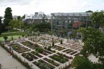 Hortus Botanicus de Leiden